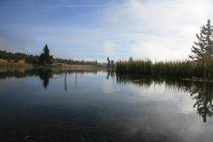 Reinsvatn